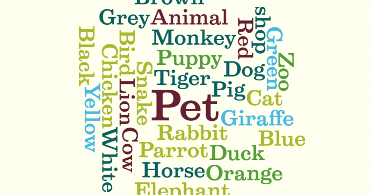 TIE gr 5 Animal Memory Game